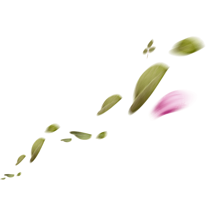 hojas-1