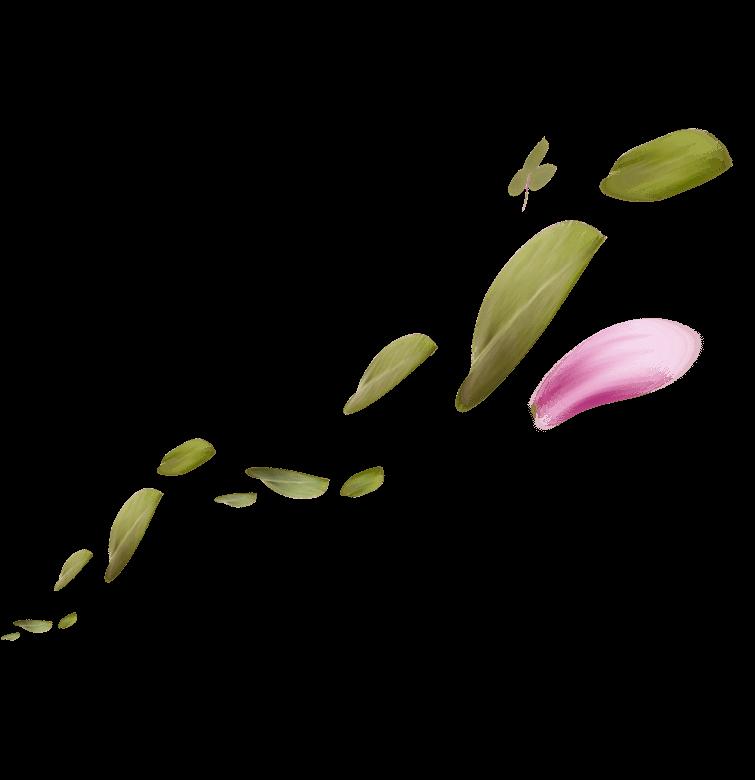 hojas-2